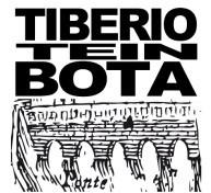 XIX Festa de Borg