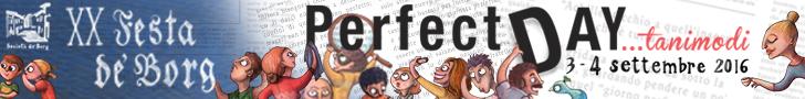 web banner festa de borg